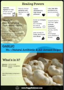 Ginger and garlic - garlic mini