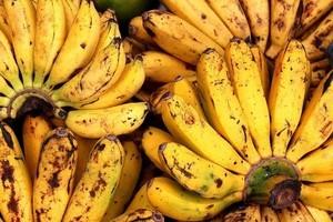 Chia Vanille Pudding - bananas