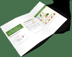 Preview 6 Healing Protocol Constipation, peggyschirmer.com